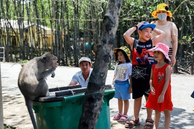 Khám phá vương quốc khỉ ở TP Hồ Chí Minh - 8