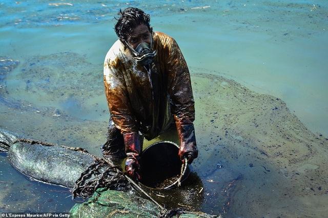 4.000 tấn dầu tràn ra biển, thảm họa sinh thái đe dọa quốc đảo thiên đường - 10