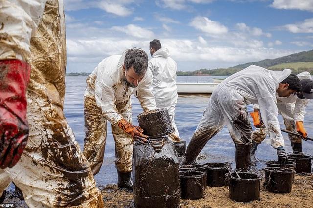 4.000 tấn dầu tràn ra biển, thảm họa sinh thái đe dọa quốc đảo thiên đường - 6