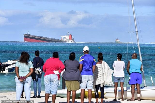 4.000 tấn dầu tràn ra biển, thảm họa sinh thái đe dọa quốc đảo thiên đường - 5