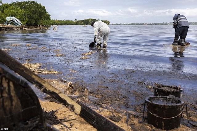 4.000 tấn dầu tràn ra biển, thảm họa sinh thái đe dọa quốc đảo thiên đường - 11