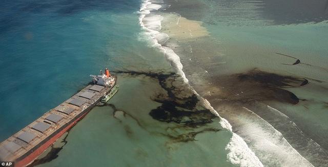 4.000 tấn dầu tràn ra biển, thảm họa sinh thái đe dọa quốc đảo thiên đường - 3