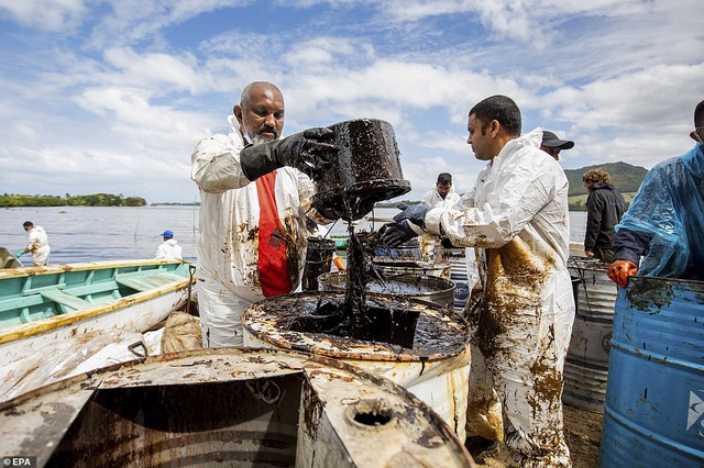 4.000 tấn dầu tràn ra biển, thảm họa sinh thái đe dọa quốc đảo thiên đường - 7