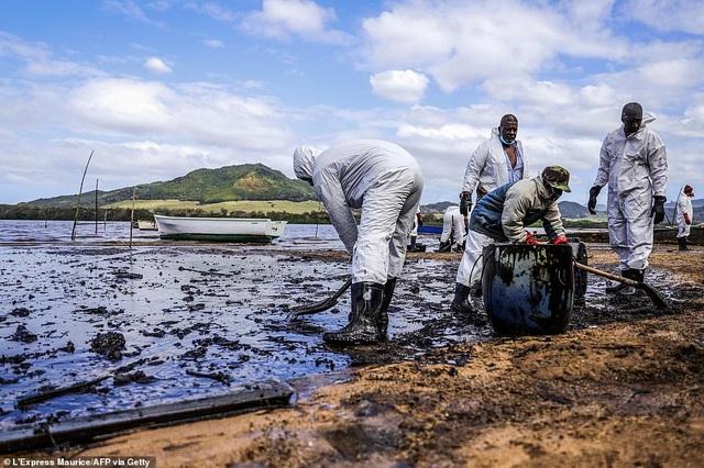 4.000 tấn dầu tràn ra biển, thảm họa sinh thái đe dọa quốc đảo thiên đường - 9
