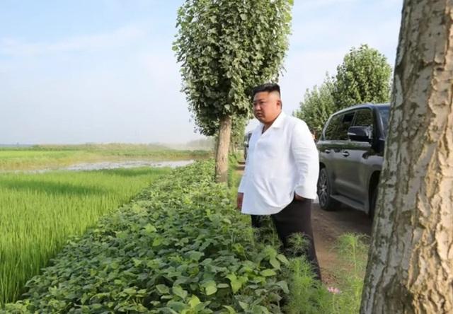 Soi chiếc SUV hạng sang ông Kim Jong-un lái đi thăm vùng lũ - 2