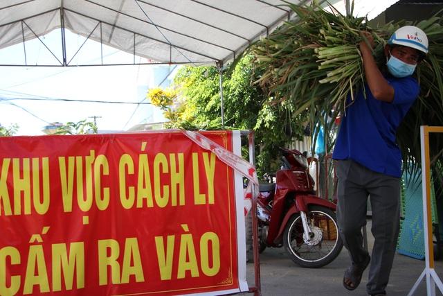 Quảng Ngãi:  Áo xanh lội ruộng tìm thức ăn cho vật nuôi khu cách ly - 5
