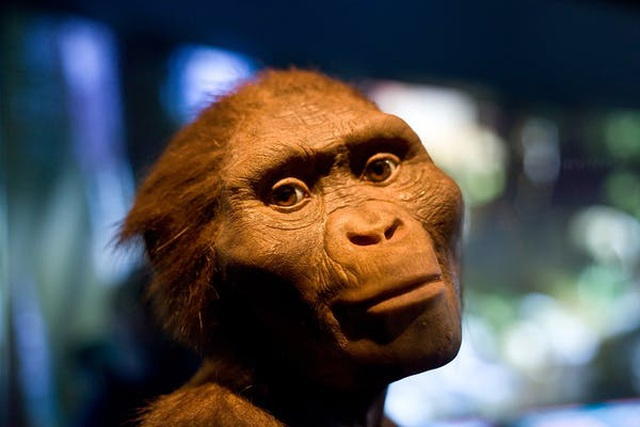 Con người đầu tiên trên Trái Đất là ai? - 3