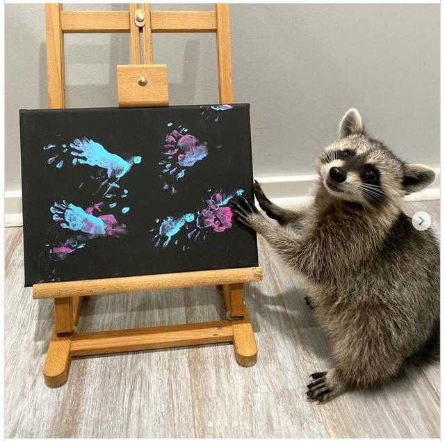 """""""Nghệ sĩ"""" gấu mèo nổi đình đám với các bức tranh tiền triệu - 2"""