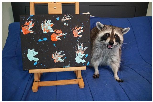 """""""Nghệ sĩ"""" gấu mèo nổi đình đám với các bức tranh tiền triệu - 3"""