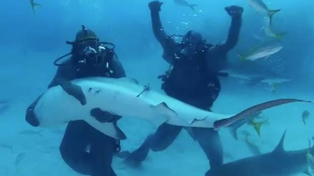 """Mike Tyson sợ hết hồn khi """"chiến đấu"""" với cá mập trắng - 1"""