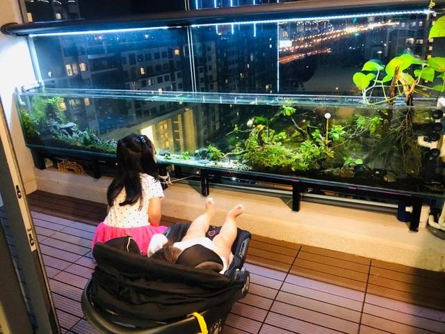 Ông bố ở Sài Gòn biến ban công thành vườn thu nhỏ với hồ cá, cây xanh - 12