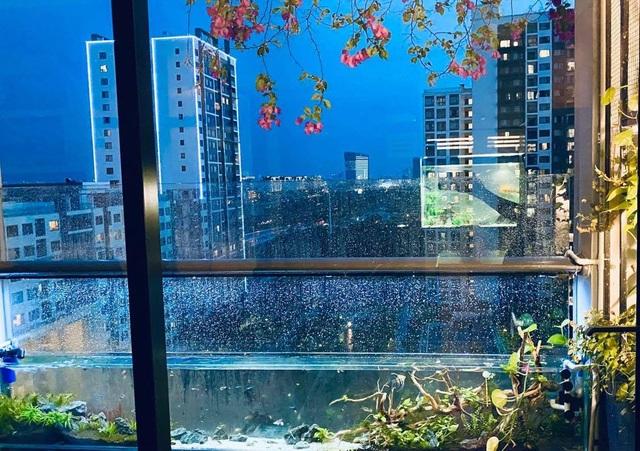 Ông bố ở Sài Gòn biến ban công thành vườn thu nhỏ với hồ cá, cây xanh - 9
