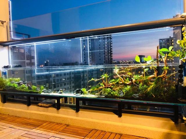 Ông bố ở Sài Gòn biến ban công thành vườn thu nhỏ với hồ cá, cây xanh - 3