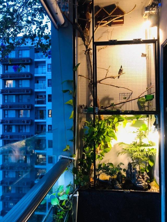 Ông bố ở Sài Gòn biến ban công thành vườn thu nhỏ với hồ cá, cây xanh - 2