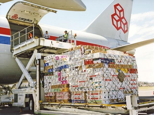 """Hàng loạt doanh nghiệp xuất nhập khẩu, logistics """"kiệt quệ"""" vì Covid-19 - 2"""