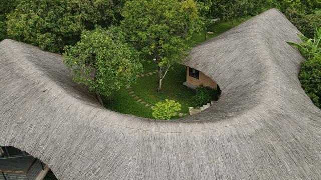 Loạt nhà mái lá ấn tượng của Việt Nam, báo Tây cũng khen nức nở - 1
