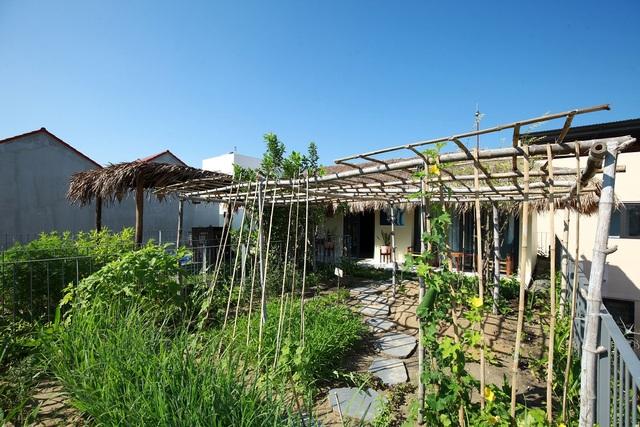 Loạt nhà mái lá ấn tượng của Việt Nam, báo Tây cũng khen nức nở - 10