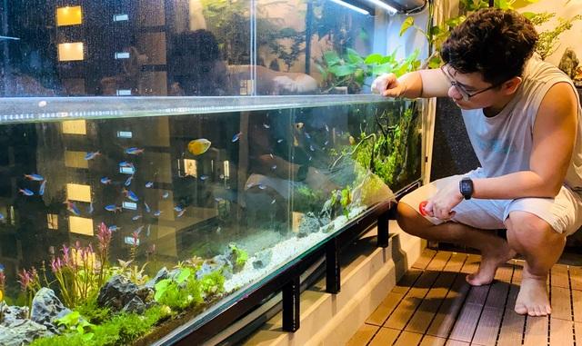 Ông bố ở Sài Gòn biến ban công thành vườn thu nhỏ với hồ cá, cây xanh - 5