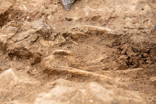 Phát hiện nghĩa địa thời trung cổ còn nguyên vẹn các bộ hài cốt - 6