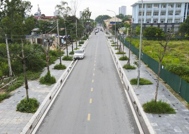 Hà Nội: Hàng trăm cây xanh tiếp tục đột tử trên con đường mới mở - 2