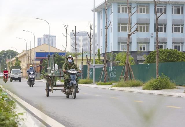 Hà Nội: Hàng trăm cây xanh tiếp tục đột tử trên con đường mới mở - 9