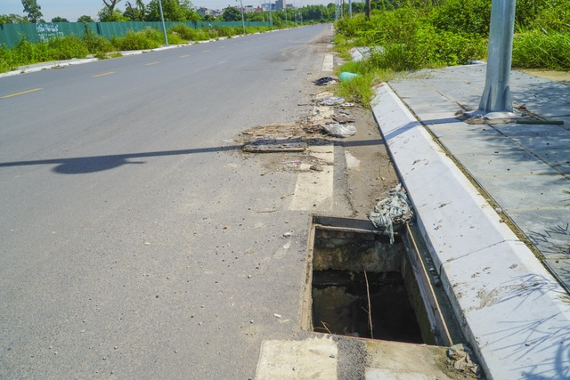 Hà Nội: Hàng trăm cây xanh tiếp tục đột tử trên con đường mới mở - 12