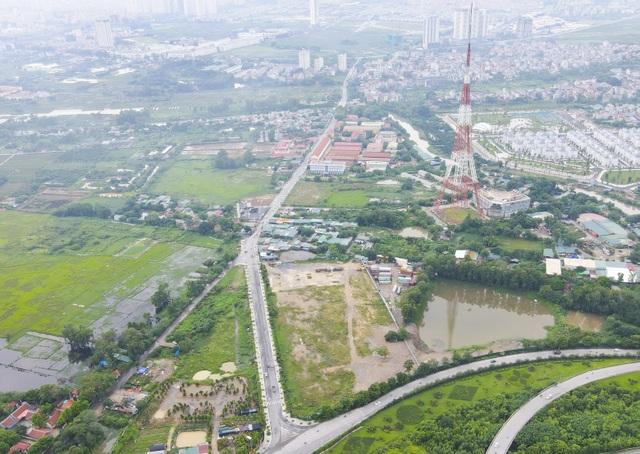 Hà Nội: Hàng trăm cây xanh tiếp tục đột tử trên con đường mới mở - 15