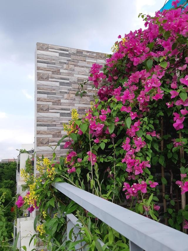 """Mẹ đảm khéo tay """"hô biến"""" ban công thành vườn hoa giấy tuyệt đẹp ở Hà Nội - 8"""