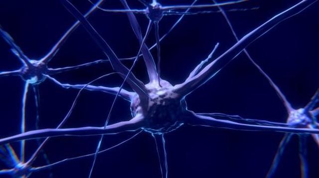 """Mất ngủ mãn tính có thể khiến não bộ """"tự ăn chính mình""""? - 1"""