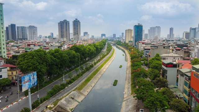 Mãn nhãn những con đường rợp bóng cây xanh ở Hà Nội - 1