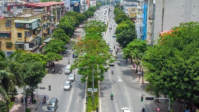 Mãn nhãn những con đường rợp bóng cây xanh ở Hà Nội - 9