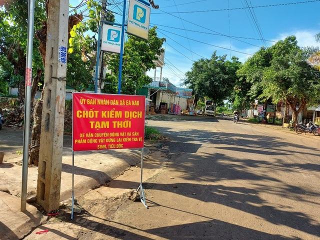 Tiêu hủy hơn 3.000 gia cầm, TP Buôn Ma Thuột công bố dịch cúm H5N6 - 2