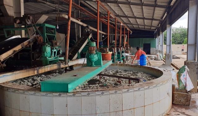 Phú Yên: Dân khổ sở bỏ nhà đi tránh mùi hôi khủng khiếp từ nhà máy cao su - 4