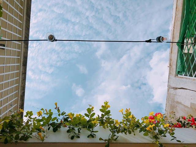 """Người chồng ở Sài Gòn tự làm vườn sân thượng """"sống ảo"""" cho vợ - 1"""