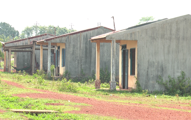 Nghịch lý ổn định dân cư tại Đắk Nông: từ dân định cư trở thành dân di cư - 4