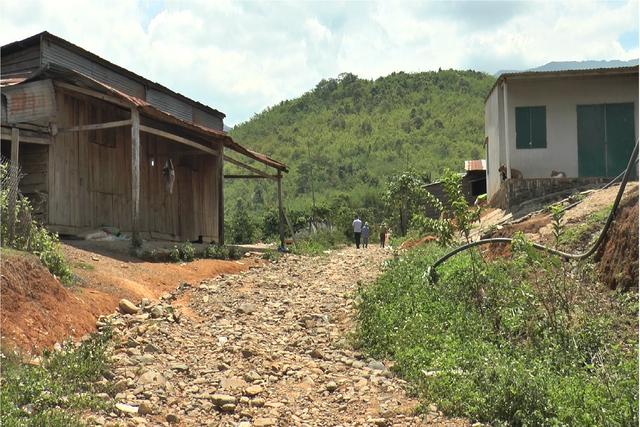 Nghịch lý ổn định dân cư tại Đắk Nông: từ dân định cư trở thành dân di cư - 5