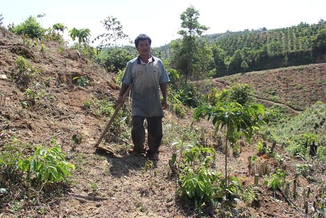 Nghịch lý ổn định dân cư tại Đắk Nông: từ dân định cư trở thành dân di cư - 6
