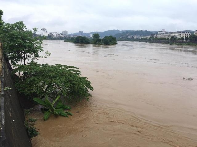Lũ lớn nhấn chìm đảo Soi Tiền nằm giữa sông Hồng - 4