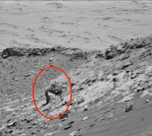 Thợ săn UFO tuyên bố phát hiện voi trên... sao Hỏa - 2