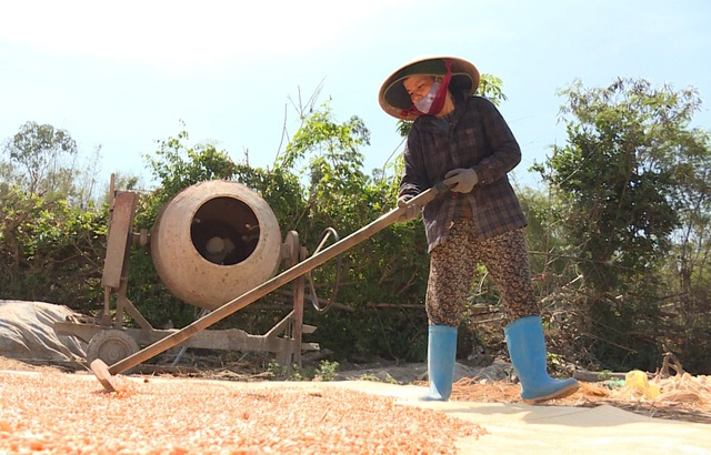 Nữ phụ hồ trả lại 150 triệu đồng nhặt được trong tấm bạt phơi lúa - 2