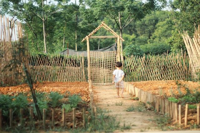 Bỏ chốn phồn hoa, cô gái về quê xây nhà chỉ với 50 triệu đồng đẹp ngỡ ngàng - 2