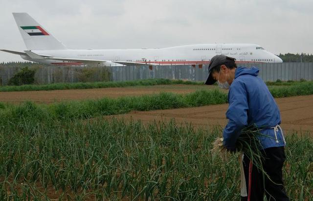 Từ chối 40 tỉ đồng đền bù, quyết giữ đất trồng rau... giữa sân bay đông đúc - 1
