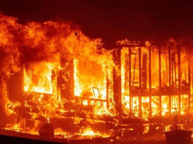 Cháy rừng kinh hoàng đe dọa California - 9