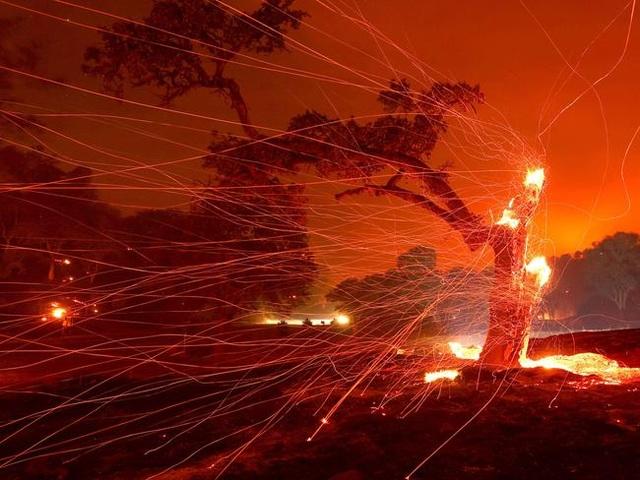 Cháy rừng kinh hoàng đe dọa California - 3