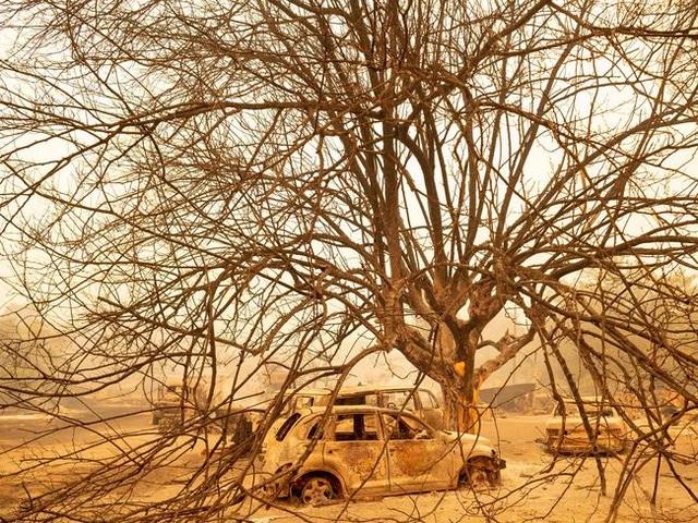 Cháy rừng kinh hoàng đe dọa California - 10