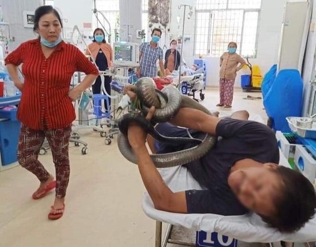 Bị rắn hổ chúa khủng cắn, người đàn ông ôm hung thủ nhập viện cấp cứu - 2