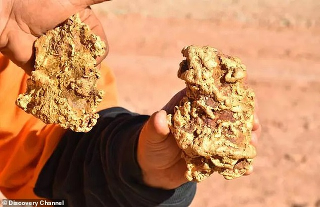 Hai anh em chuyên tìm kho báu đào được 2 cục vàng khủng trị giá 8 tỷ đồng - 1