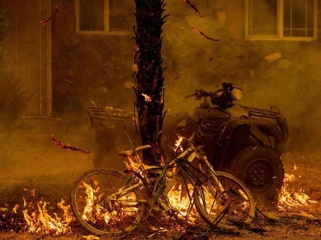 Cháy rừng kinh hoàng đe dọa California - 6