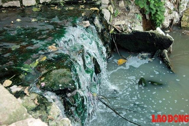 Ô nhiễm vô địch: sông Nhuệ, sông Đáy độc đến độ không thể tưới rau - 1