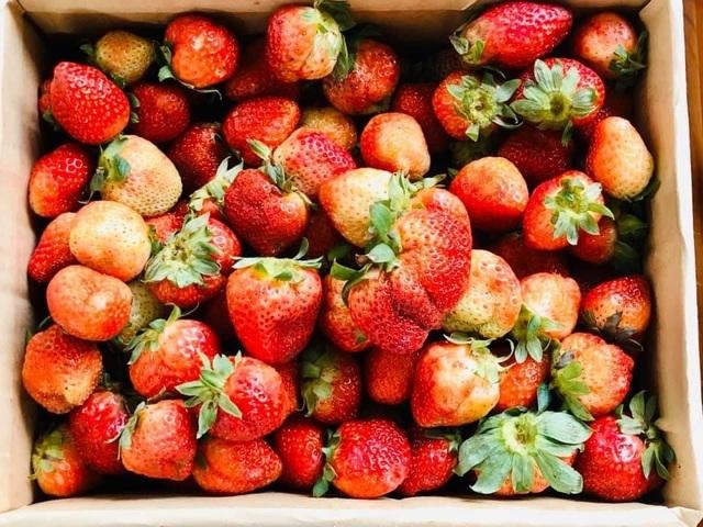 Những loại trái cây hàng đầu ngăn ngừa bệnh ung thư - 1